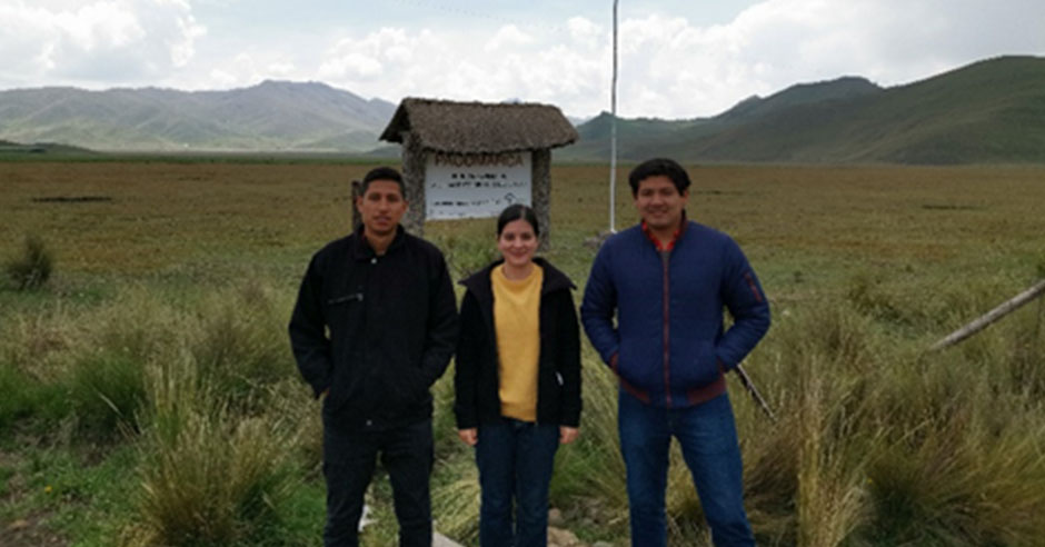 investigadores-santamarianos-logran-25-de-avance-en-tecnologia-para-transformar-industria-de-fibra-de-alpaca