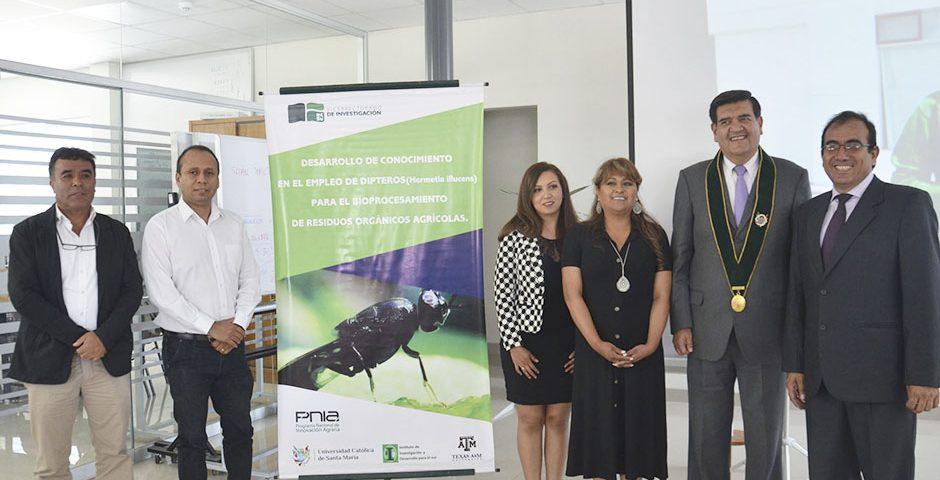 ucsm-produce-larvas-de-mosca-soldado-con-alto-valor-nutricional